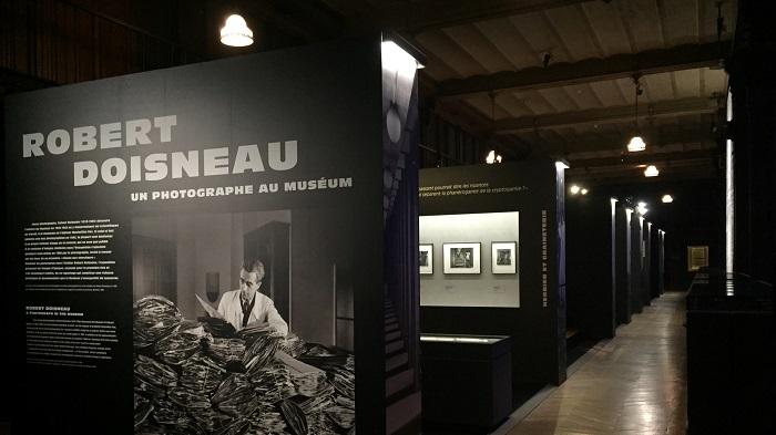 La Nantaise à Paris. Rétrospective 12122015 (5)